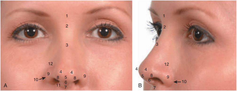 Understanding Nose Irregularities Before Rhinoplasty Surgery