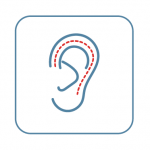 A drawing of an ear with a red dotted line